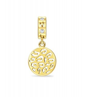 Charms Leopard Coin Endless 1881