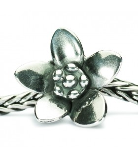 Perle Trollbeads Le Messager