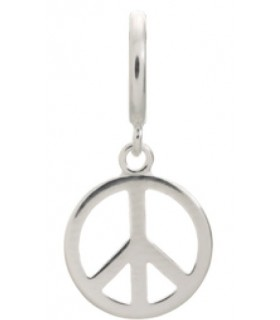 Charms Peace Coin Endless 43261