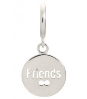 Charms Friends Coin Endless 43265